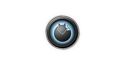 The Premier Training and Certification - Blackfox com