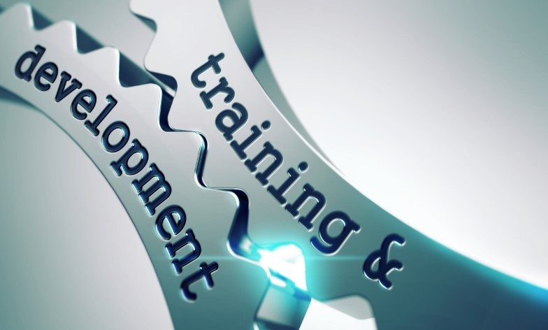 employee training and development - concept